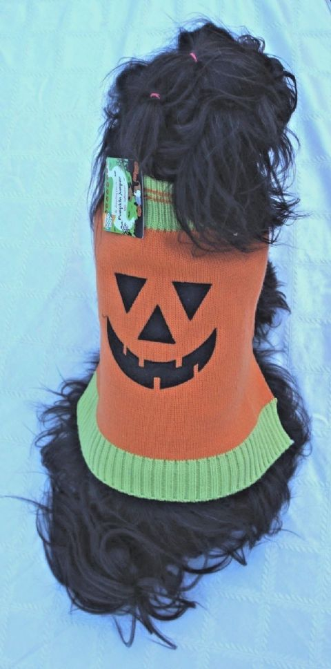 "DOG JUMPER HALLOWEEN FANCY DRESS PUMPKIN SWEATER DOG FANCY DRESS 14"" OR 16"""
